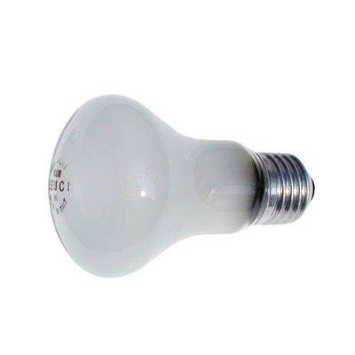 【鴻昌】elinchrom 對焦燈泡 90V /100W EL23006 華曜公司貨 棚燈用燈泡