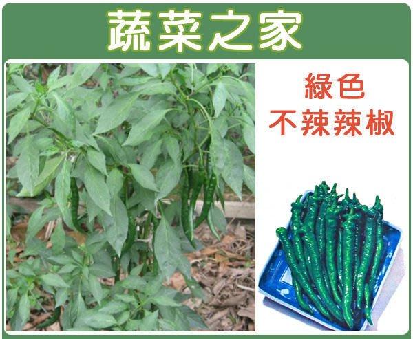 【蔬菜之家】G03.綠色不辣辣椒種子30顆(小青龍.糯米椒.果面皺縮.可炒食.蔬菜種子)