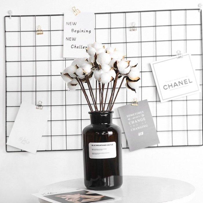 西柚姑娘雜貨鋪☛熱賣中#天然棉花攝影道具擺件干花DIY干花裝飾擺件花束真花 ins拍照道具