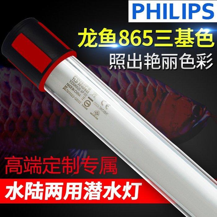 紅金龍魚專用燈飛利浦865龍魚燈T8/T9潛水燈魚缸水族防水中照明燈igo免運