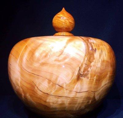 台灣黃檜樹榴大寶瓶