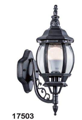 OUutdoor Flood Light Series 17503