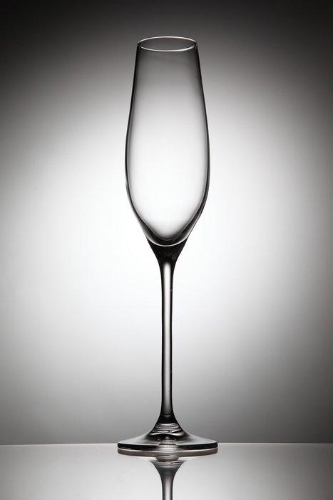 ☆波西米亞人☆斯洛伐克RONA 歡慶系列 Celebration專業酒杯 香檳杯 210ml
