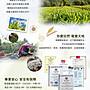 【紅白對抗】天華 台灣製造 調節生理機能,滋補強身、健康維持