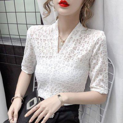 酷利男=酷利男=上衣 V領 S-XL淑女韓系 網紅同款高彈力蕾絲打底衫蕾絲衫短袖.T327.917
