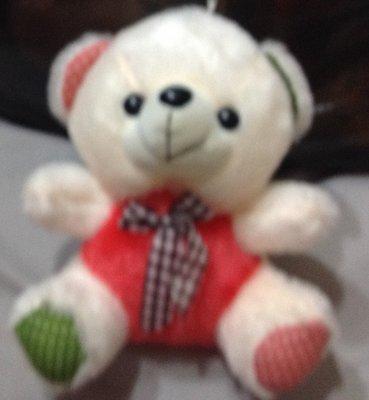 全新可愛熊