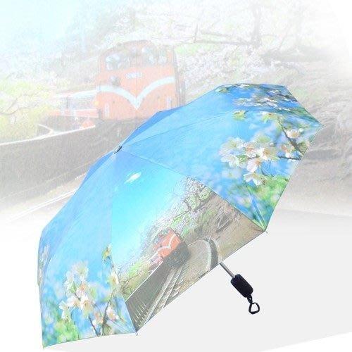 吉野櫻(防暴衝)自動晴雨傘/三折傘