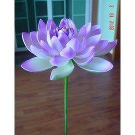 帶杆模擬荷花睡蓮 塑膠花 牢固結實 表演道具 水景裝飾 插花 逼真-16cm-7901002