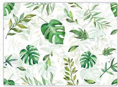 波蘭 Decoupage Paper(專用紙)A3編號PL-D-0599~蝶古巴特 餐巾紙拼貼 彩繪 黏土DIY手作材料