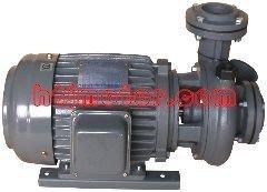 勝田 1/2HP 2P 三相 1 渦流式泵浦 同軸抽水機 冷卻循環馬達 抽水馬達 幫浦 非東元