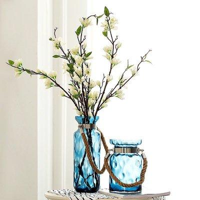 賓士印象~透明玻璃花瓶美式玻璃花瓶水培水養花瓶客廳臥室花藝擺件水培容器