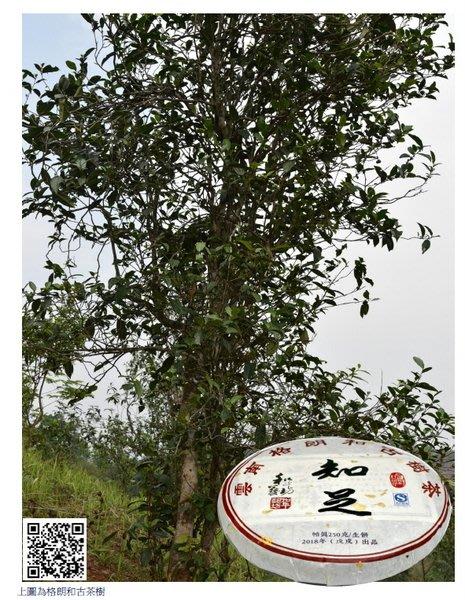 2018年吻潤知足格朗和古樹茶餅(250克)