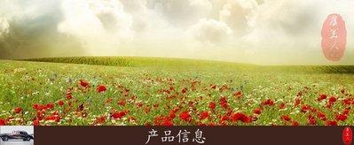 小紅帽魅力彩妝鋪香港專柜NARS腮紅DEEP THROAT/ORGASM/taj mahal高潮/深喉/泰姬陵