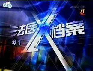 【法醫X檔案I】陳之財 潘玲玲 10集2碟DVD