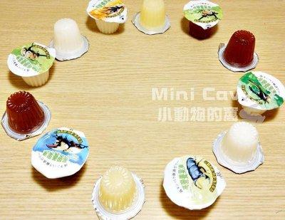 。╮♥ Mini Cavy ♥╭。甲蟲專用高蛋白果凍 3種口味 單顆 (蜜袋鼯可)