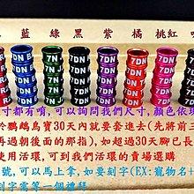 彩色鸚鵡腳環~流水編號~ 鋁製固定環(馬上拿) 腳環/鸚鵡腳環/死環/固定環/O環/封閉環