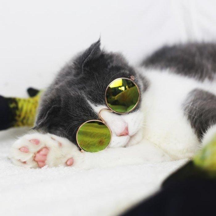貓眼鏡屋簡貓咪太陽鏡墨鏡眼鏡社會潮流寵物飾品配飾小型犬狗狗搞怪眼鏡