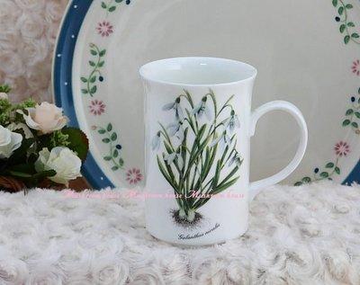點點蘑菇屋 {骨瓷杯}英國進口DUCHESS清新花草-鈴花 精緻骨瓷杯 英國製