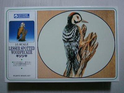 GUNZE 1/1 WOODPECKER 啄木鳥 鳥類 模型 (GX1315)