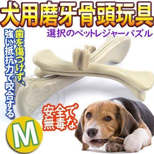 【🐱🐶培菓寵物48H出貨🐰🐹】DYY》犬用磨牙耐咬PP樹脂骨頭玩具-M號 特價88元(蝦)