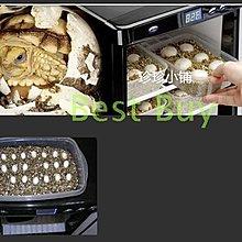 110V 出口日本規格孵蛋機 爬蟲 變色龍 蛇 鱷魚 壁虎 烏龜 海龜 兩棲 爬行 恒溫箱 冷藏箱 小冰箱 車載25L