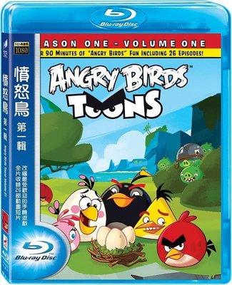 【藍光電影】憤怒的小鳥/憤怒鳥大電影 帶靜音 The Angry Birds Movie 2016  95-010