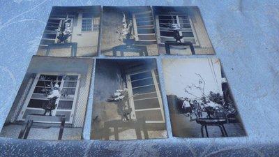 藍色小館3-13--------60年.插花照{10張}