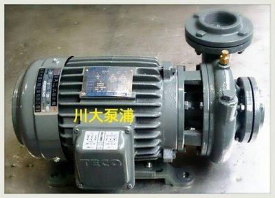 【川大泵浦】東元渦流馬達2HP*2P三相永大抽水機。抽水馬達。冷氣循環用馬達-永大泵浦 好品質