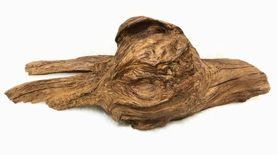 蟾蜍皮 復興 沉水 肖楠 黑格 樹瘤 佛珠料 捲絲 釘瘤 瘤花 雕刻 擺設 梢楠 天然 擺件 風水 招財 非檜木
