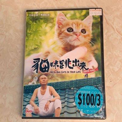 日本電影《貓咪跳出來》DVD{粵語配音/中文字幕}[全新品]