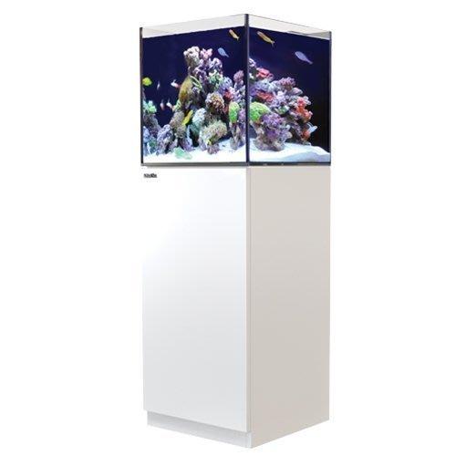 海葵達人* Red Sea紅海REEFER 170海水超白玻璃底濾魚缸60X50X50cm白色*實體店面購物有保障*
