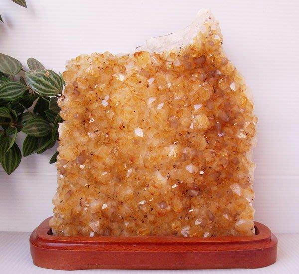 小風鈴~天然頂級黃晶簇/黃晶片/黃水晶簇擺件~重2095g(黃9)