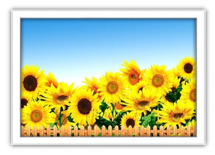 四方名畫: 太陽花向日葵025 C尺寸  含實木框/厚無框畫 畫質細緻 裝飾畫MIT可訂製尺寸