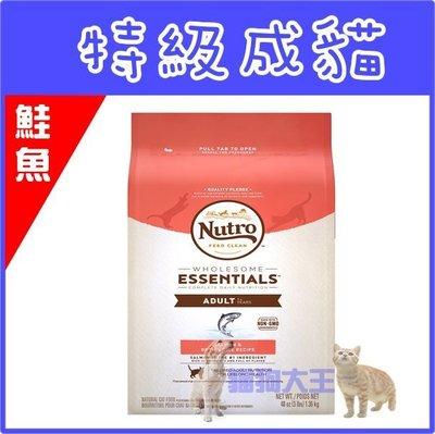 **貓狗大王**美士-特級成貓(鮭魚+糙米) 6.5磅/非皇家/非希爾思