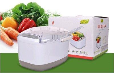 多功能全自動蔬果清洗機 臭氧消毒機 家用洗菜機 洗碗機 降解去農藥