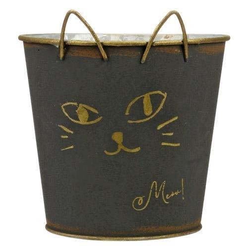 貓咪造型鐵花盒(底有㓊)可以種花丶多肉