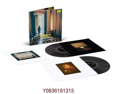 爆款CD.唱片~Christian Loffler Shellac Reworks By LP 黑膠唱片