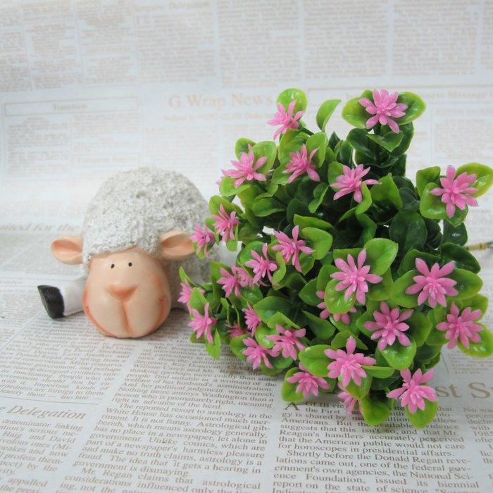 【樂提小舖】02016 芙蓉花小草 5色 裝飾小草 仿真植物 裝飾植物 生活雜貨 仿真草 布置草 裝飾草 塑膠草 假草
