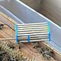 【688蜂具】中蜂竹籤王籠 囚王籠 野蜂專用 蜂具 野蜂蜂王籠 養蜂工具 隔離蜂王 竹子王龍 14根竹籤