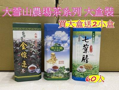 【Q妹】大雪山農場 金線蓮茶 金線蓮 明日葉 海人蔘茶 七葉膽 茶包 買大送2小盒 (60包/盒)