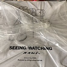 KAWS BENDY CHUM SEEING WATCHING PLUSH 16 inches medicom bearbrick blitz snoopy