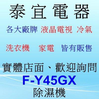 【泰宜電器】Panasonic 國際 F-Y45GX 除濕機 22L/日 【另有RD-320HH/DW-J12FT】