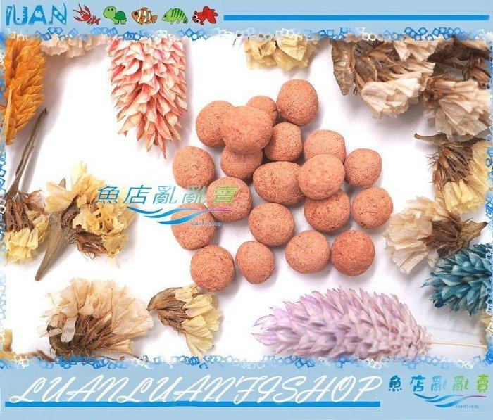 【~魚店亂亂賣~】德國哈比水草營養根肥球100g小粒散裝(水草根部用)店長拆裝服務各位