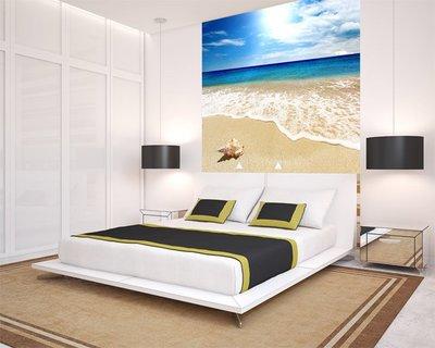 客製化壁貼 店面保障 編號F-071 海灘貝殼 壁紙 牆貼 牆紙 壁畫 星瑞 shing ruei