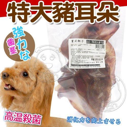 【??培菓寵物48H出貨??】寶貝餌子》795C特大豬耳朵寵物零食-300g 特價279元(自取不打折)