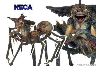 金錢貓雜貨 全新 NECA Spider Gremlin 小精靈 蜘蛛魔怪