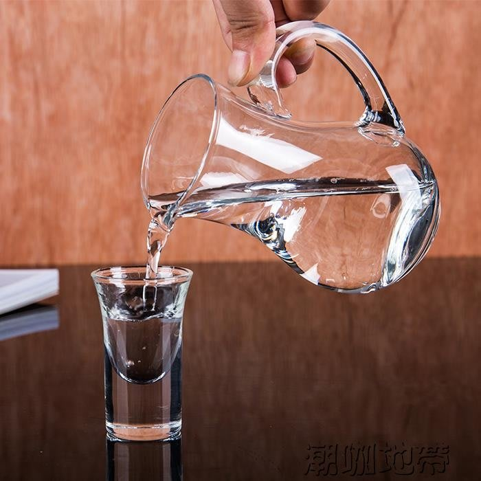 (免運)透明水晶玻璃白酒壺分酒器紅酒醒酒器分酒壺白酒紅酒扎壺洋酒公杯【莉芙小鋪】