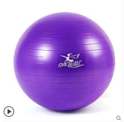 {易生發生活館}加厚瑜珈球防爆健身球瑜伽球孕婦球減肥球復健分娩瑜伽運動平衡球  紫色(磨砂面有logo)
