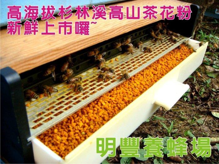 《明豐養蜂場》300g杉林溪高山蜂花粉.A級貨口感香甜色澤美.蜂蜜蜂王乳蜂蠟
