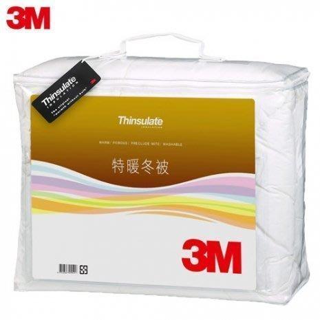 (免運)3M Thinsulate輕透可水洗特暖厚冬被 (Z500標準雙人6x7)